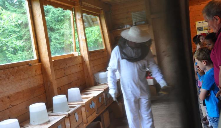 Bienenschauhaus Kernhof (© TVB Pyhrn-Priel)