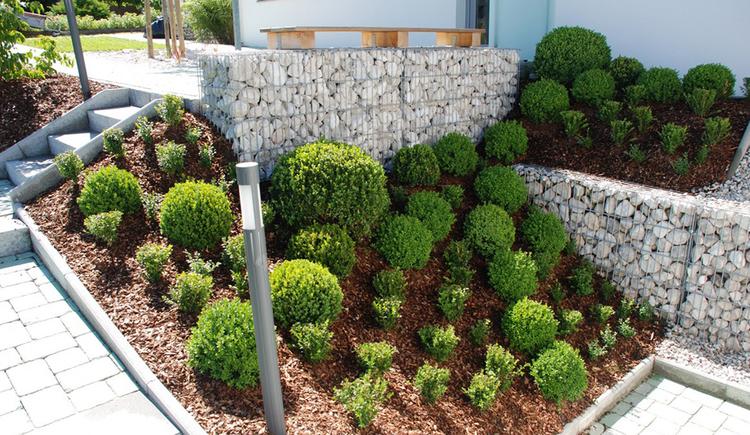 stone basket, bush