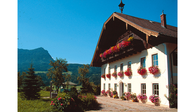 look at the house with balcony and flowers, in front of the house meadows and bushes, in the Background the mountains