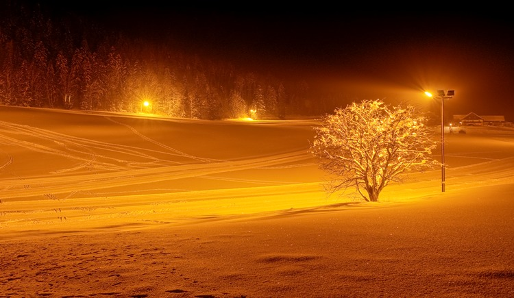 Trail under floodlights in the cross country village Faistenau (© Tourismusverband / Josef Rehrl)