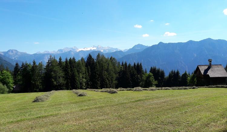 Herrliches Panorama und absolute Ruhe in der Ferienhütte Kriemoos in Bad Goisern