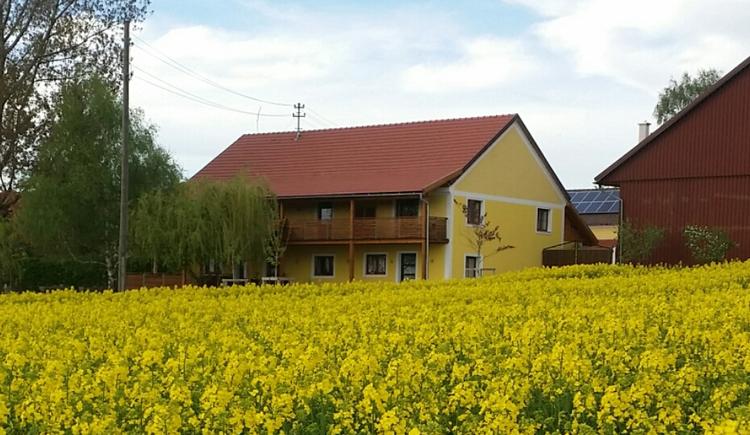 Sachsenbucherhof in Gurten