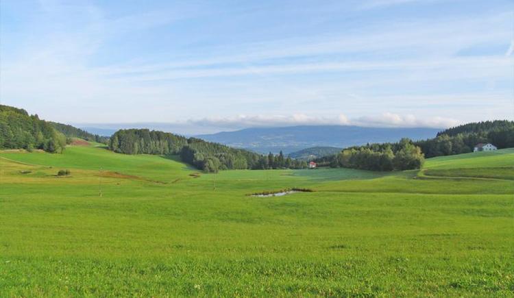 Ausblick auf den Böhmerwald (© Privat)