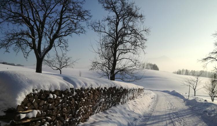 Bio Bauernhof Schafleitner-Kroiß (© Tourismusverband MondSeeLand)