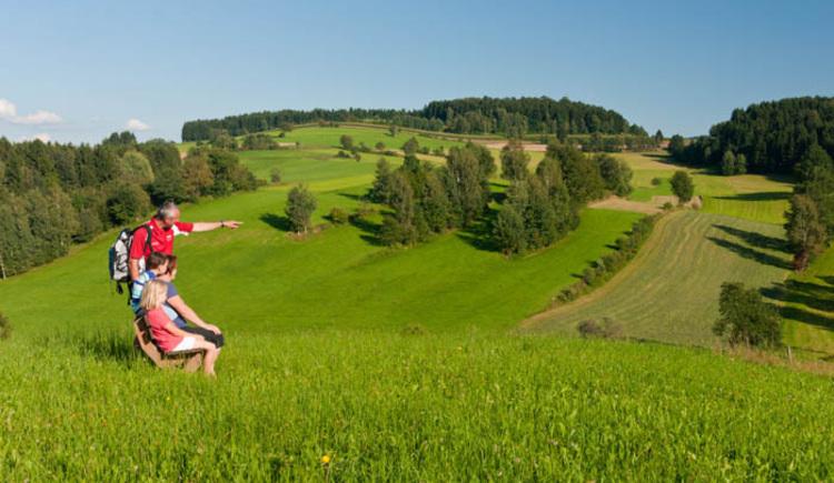 Schöne Wanderung durch eine abwechslungsreiche bäuerliche Landschaft!