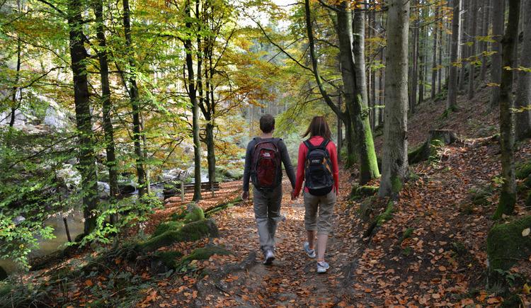 Wanderung im Thurytal (© OÖT Andreas Röbl)