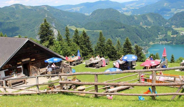 Lärchenhütte auf der Sausteigalm. (© Fr.Frimbichler)