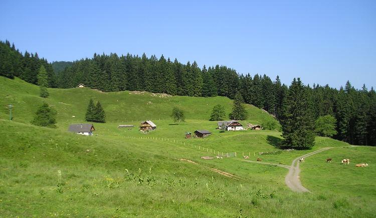 Mittereggalm am Fuße des Faistenauer Schafberges (© Tourismusverband Faistenau)