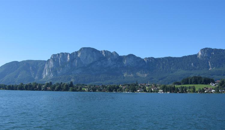 Blick vom See auf das Ufer, im Hintergrund die Berge. (© Tourismusverband MondSeeLand)