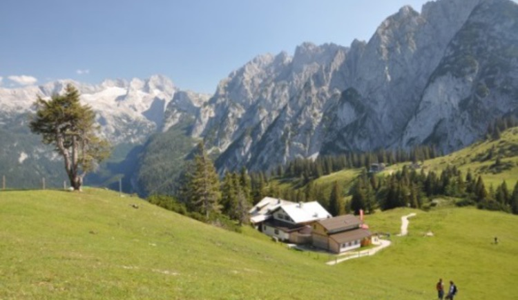 Sommercard Special (© © Dachstein Tourismus AG)