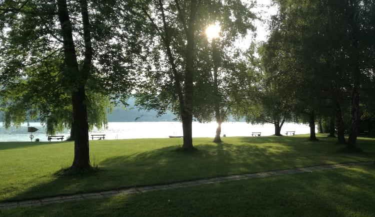 Wiese im Strandbad Steinbach