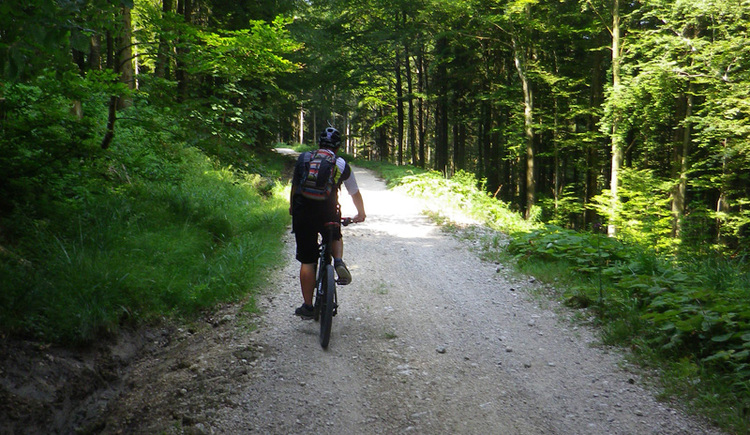 Mountainbike 2 (© Susanna Kiebler)