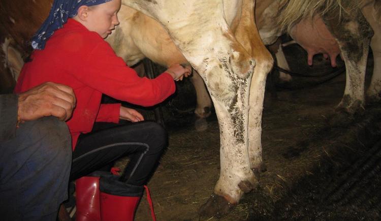 Ein `Häferl`selbstgemolkene Milch genießen? (© Familienbauernhof Christa)