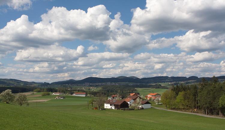 Blick auf Spattendorf (© Hanno Strigl)