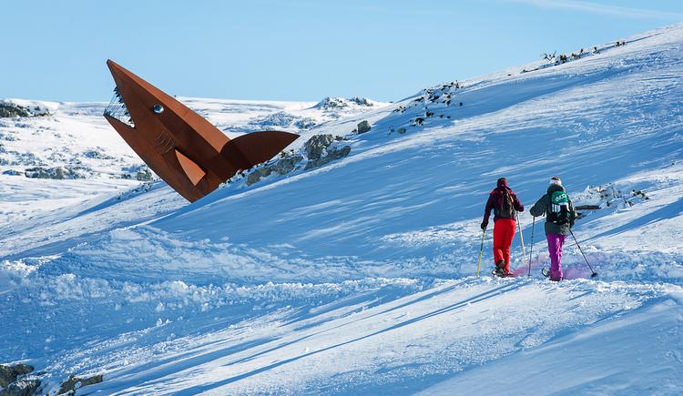 Schneeschuhwandern zum Dachstein Hai. (© Dachstein Tourismus AG/Manfred Schöpf)