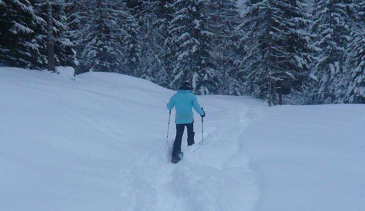 Schneeschuhwanderung im verschneiter Landschaft (© Christina Keltenich)