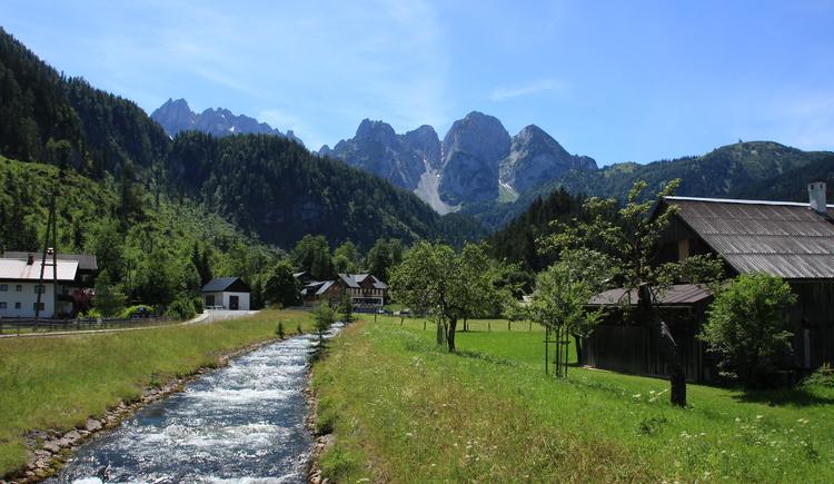 Gosaubach mit dem Gosaukamm im Hintergrund. (© Ferienregion Dachstein Salzkammergut/Unterberger Christopher)