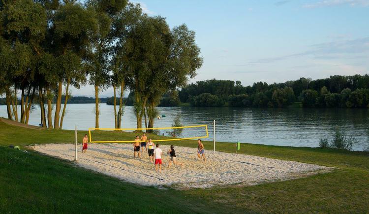 Au an der Donau, Beachvolleyball an der Donau