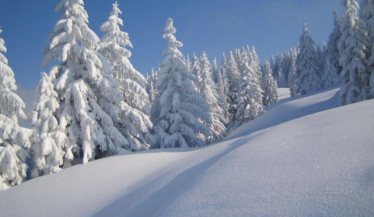 Verschneite Winterlandschaft (© Tourismusverband Hintersee)