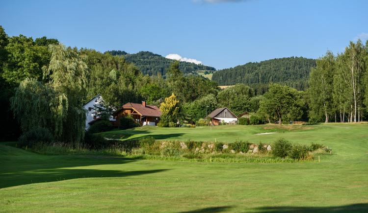 Golf Sport Natur