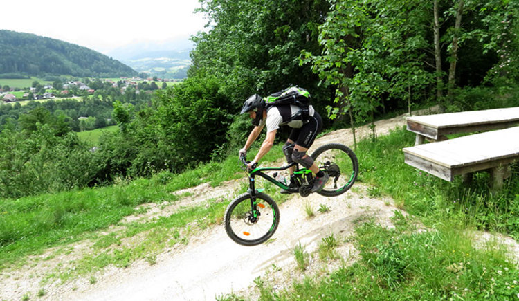 Mountainbike Fahrtechnik Training (© pyhrnPriel-mountainbike e.U.)