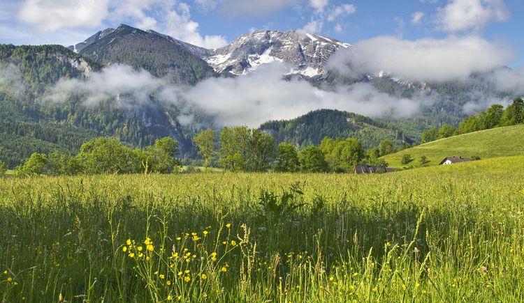 Warscheneckblick vom Schweizersberg_1 (© TVB Pyhrn-Priel/Sulzbacher)