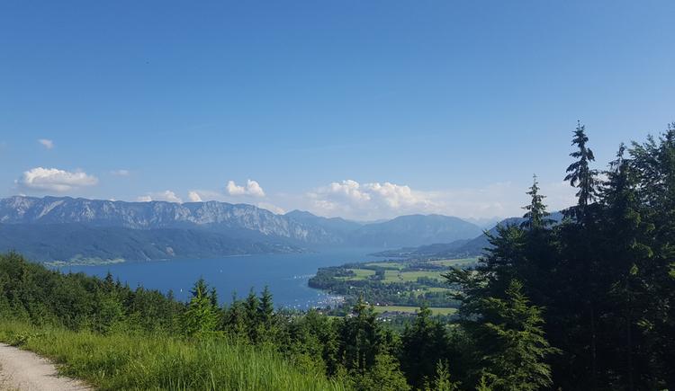Berge, See, Wald