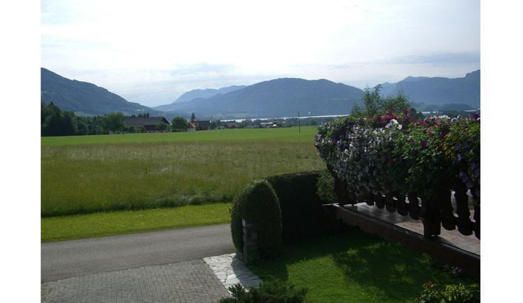 Ausblick auf die Wiesen, im Hintergrund die Berge, seitlich eine Hecke