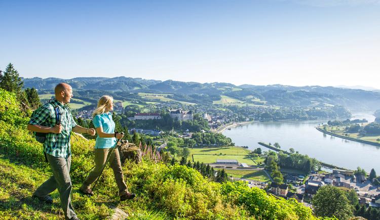 Blick auf Grein mit Schloss Greinburg