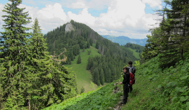 Mehrtagestour, wandern, Nationalpark Kalkalpen, Reichraminger Hintergebirge, Rangertour, Natur, Erlebnis,