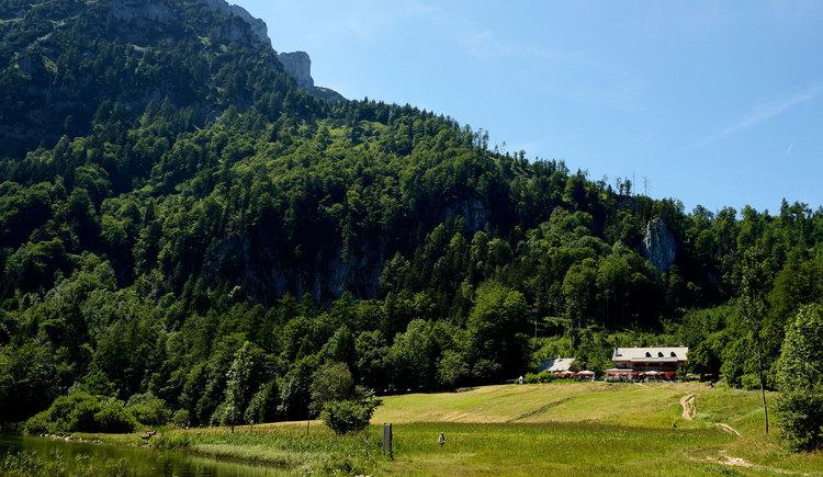 Ramsauer Alm am Laudachsee mit Traunstein. (© Tvb Traunsee-Almtal, Foto Karl-Heinz Ruber)