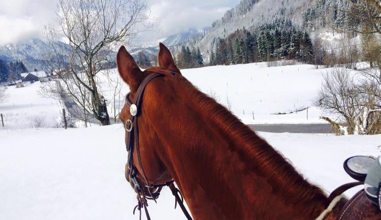 Reiten in der Schneelandschaft (© Cold Creek Ranch)
