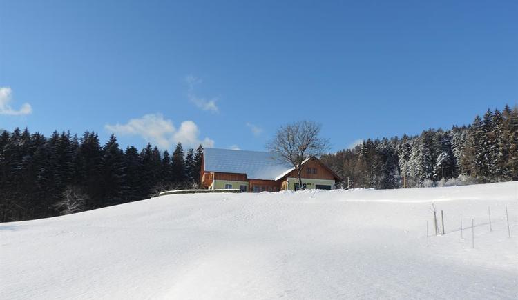 DSCN1887 (© Bammer im Herndlberg)