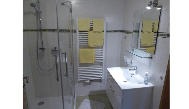bathroom with on the right the bassin and mirror, on the back the toweldryer and on the right the shower