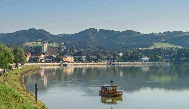 Donauradweg mit Blick auf Grein (© WGD Donau/OÖ Tourismus/Hochhauser)