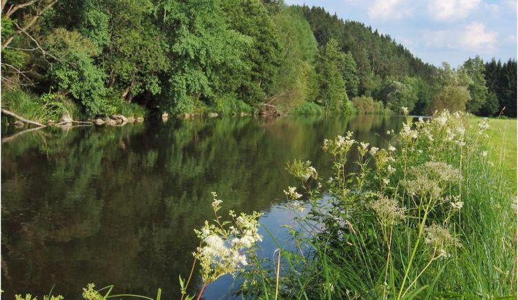 Wanderweg Große Mühl (© Ferienregion Böhmerwald | Schwarzmann)