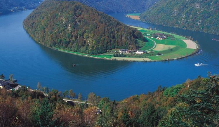 Donauschlinge (© WGD Linz)