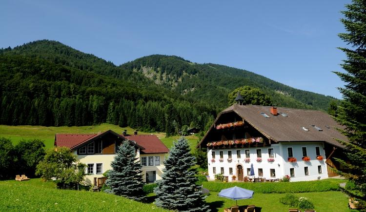 Pension Hohenau (© Hohenau, Fam. Brandstätter)