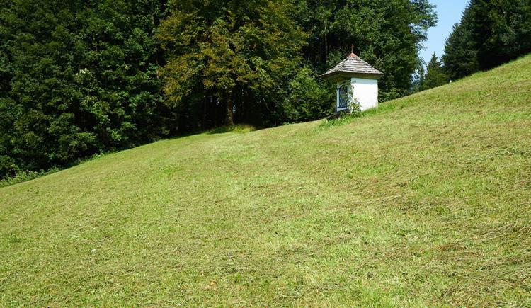 Kapelle steht in einer Wiese, im Hintergrund ein Wald