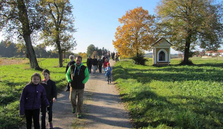 Wandergruppe (© Naturpark Obst-Hügel-Land)