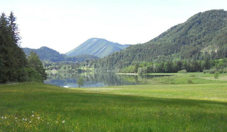 View from the hiking tour around the lake to the bathing beach Taugl-Zipf