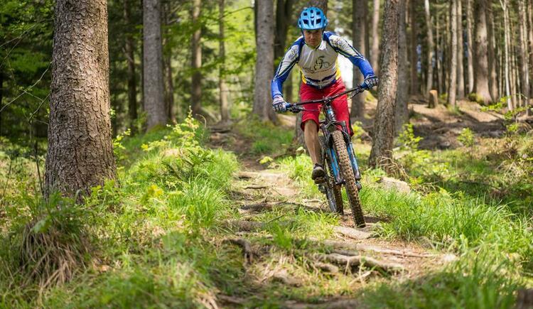 Bikepark Wurbauerkogel - Strecke
