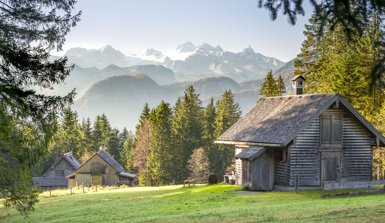 On a hike on the Rossmoos mountain pasture you can expect wonderful panorama views like this view of the Dachstein. (© RudiKainPhotografie)