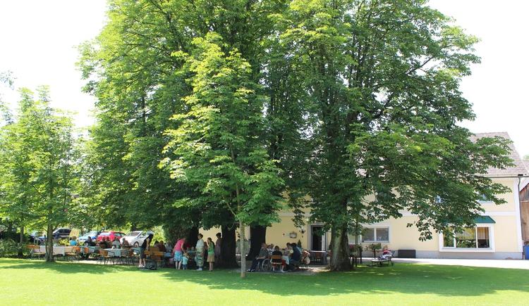 Steiner-Kraml Gastgarten (© Kraml)
