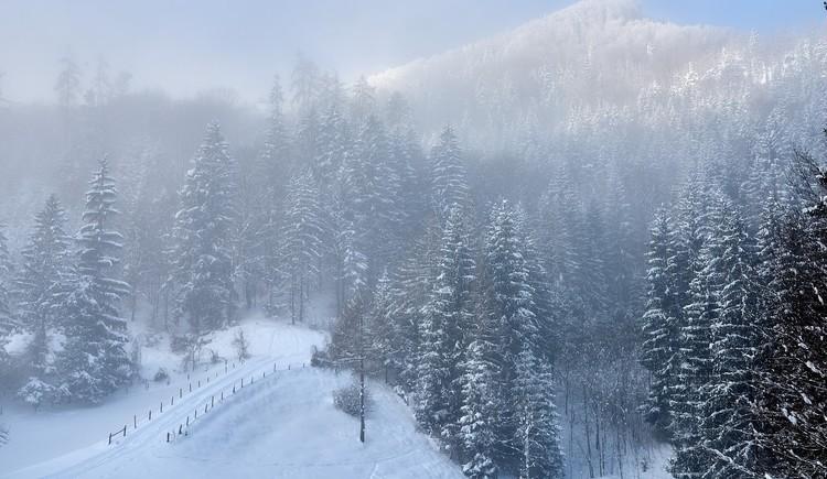 winter_steyrtal_02_-c-tman (© Tman)