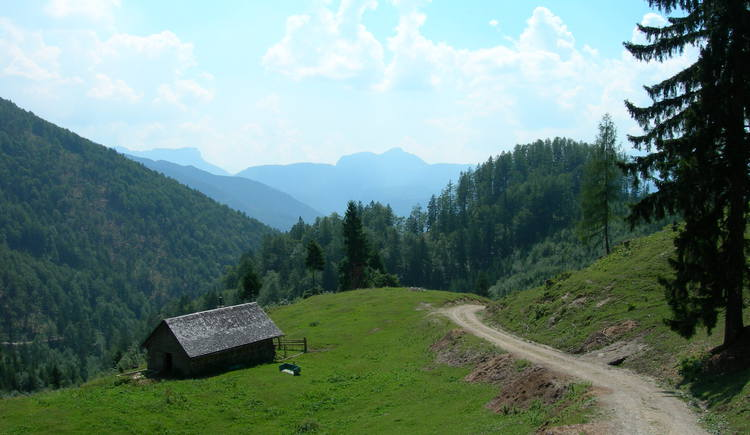 Saiherbachalm (© Oberösterreich Tourismus / green-solutions)