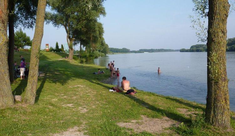 der traumhafter Gastgarten an der Donau, direkt am Donauradweg. (© Gerhard Ebner)