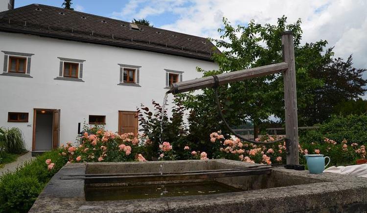 Klosterhof Traunkirchen_DSC_5467 (© Apartment Heidelinde)