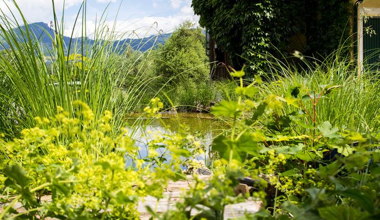 Garten (© MORI Fotografie)