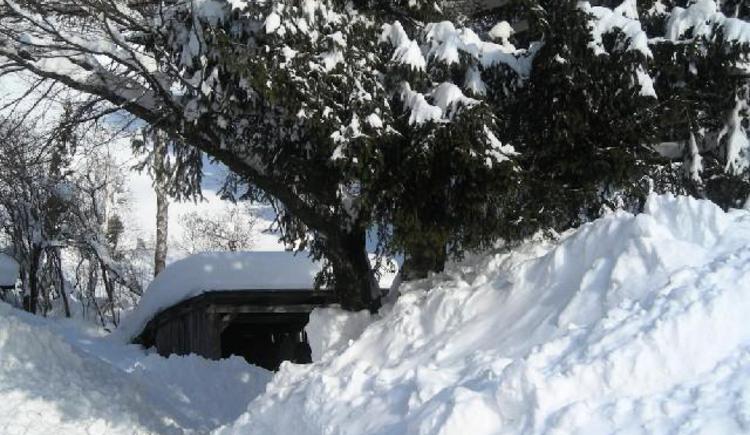 Schneeberge beim `Botenwirt`